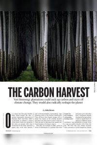 The Carbon Harvest summary