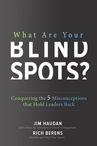 What Are Your Blind Spots? book summary