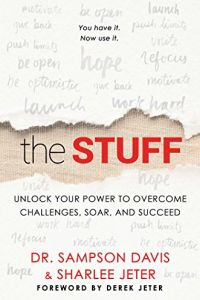 The Stuff book summary