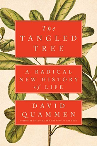 Image of: The Tangled Tree