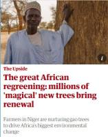 The Great African Regreening