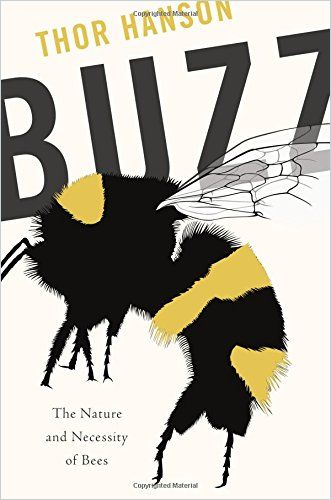 Image of: Buzz
