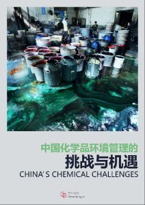 China's Chemical Challenges summary
