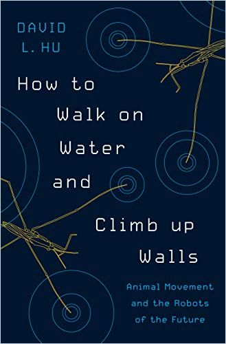 Image of: How to Walk on Water and Climb up Walls