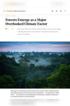 Forests Emerge as a Major Overlooked Climate Factor