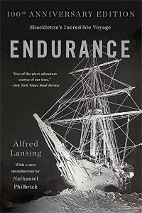 Endurance book summary