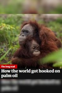 How The World Got Hooked On Palm Oil summary
