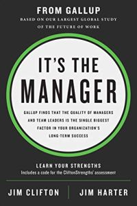 It's the Manager book summary
