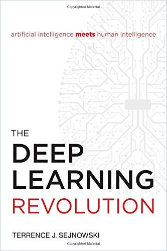 Image of: The Deep Learning Revolution