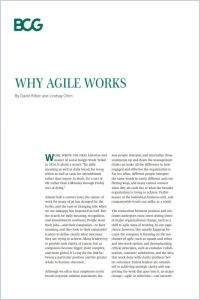 Why Agile Works summary