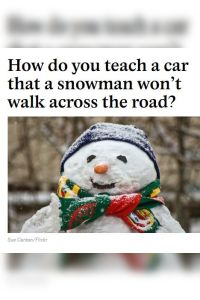 How Do You Teach a Car That a Snowman Won't Walk Across the Road? summary