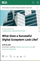 What Does a Successful Digital Ecosystem Look Like?