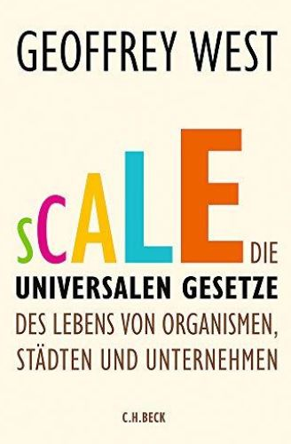 Image of: Scale