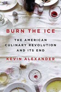 Burn the Ice book summary