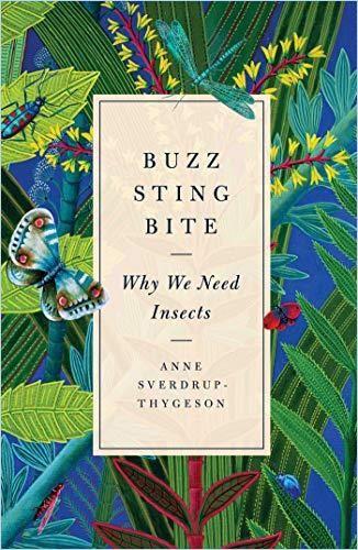 Image of: Buzz, Sting, Bite