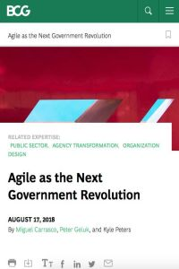 Agile as the Next Government Revolution summary