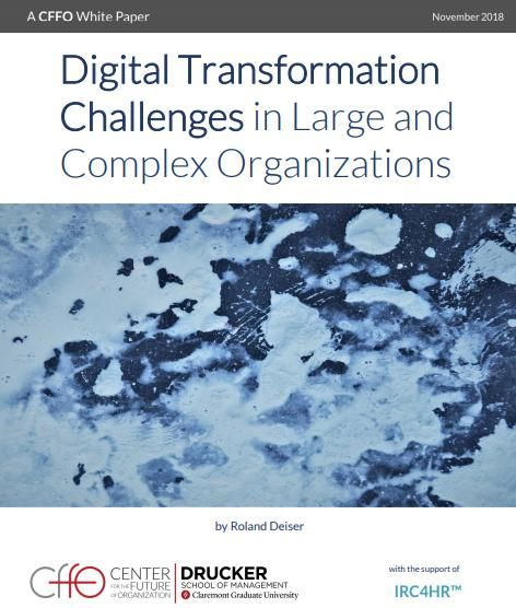 Image of: Digital Transformation Challenges in Large and Complex Organizations