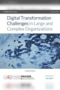 Digital Transformation Challenges in Large and Complex Organizations summary