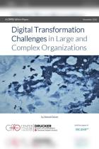 Digital Transformation Challenges in Large and Complex Organizations