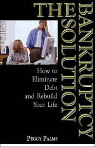 The Bankruptcy Solution book summary
