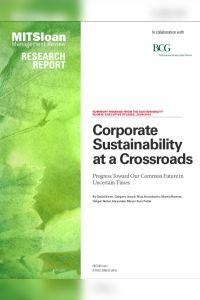 Corporate Sustainability at a Crossroads summary