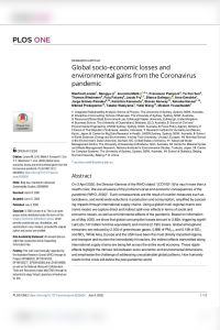 Global Socio-Economic Losses and Environmental Gains from the Coronavirus Pandemic summary