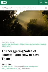 The Staggering Value of Forests – and How to Save Them summary
