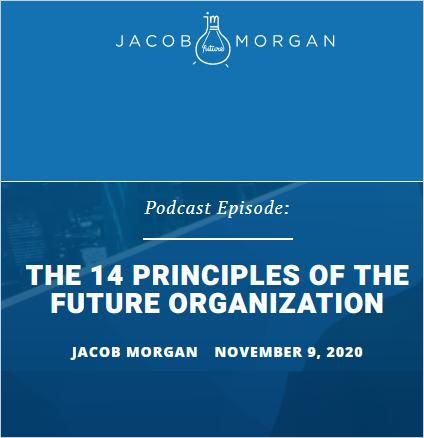 Image of: The 14 Principles of the Future Organization