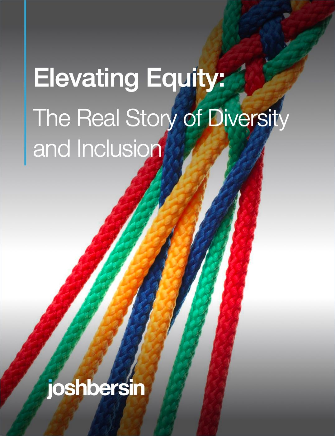 Image of: Elevating Equity