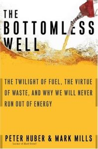 The Bottomless Well book summary