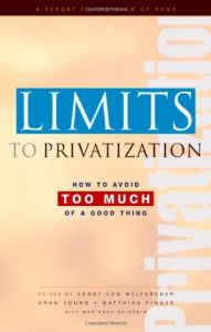 Limits to Privatization book summary