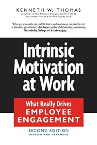 Intrinsic Motivation at Work book summary