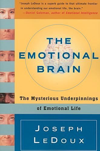Image of: The Emotional Brain