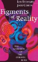 Figments of Reality book summary