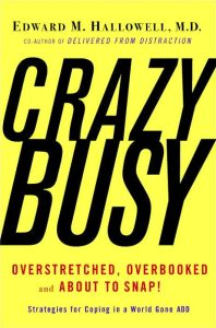 CrazyBusy book summary