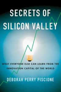 Secrets of Silicon Valley book summary
