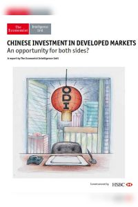 Chinese Investment in Developed Markets summary