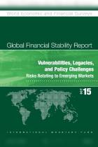 Vulnerabilities, Legacies, and Policy Challenges