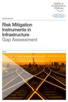 Risk Mitigation Instruments in Infrastructure