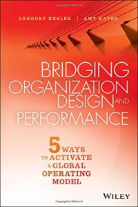 Bridging Organization Design and Performance book summary