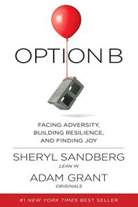 Option B book summary