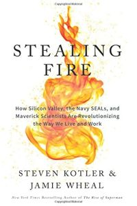 Stealing Fire book summary