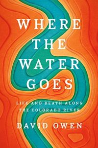 Where the Water Goes book summary