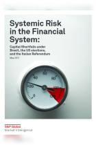 Systemic Risk in the Financial System