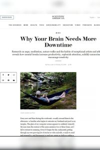 Why Your Brain Needs More Downtime summary