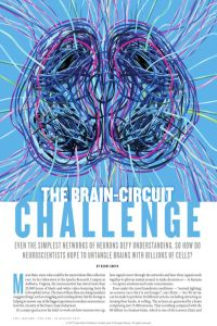 The Brain-Circuit Challenge summary