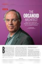 The Organoid Architect