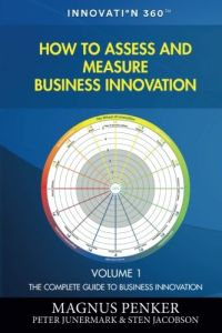 How to Assess and Measure Business Innovation book summary