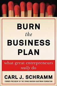 Burn the Business Plan book summary