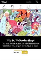Why Do We Need to Sleep?